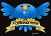 Get you 100 Twitter Followers only