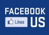 give you 100% real not bot 121+ fans on your facebook fanpage only