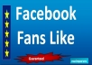 give you (5000) Facebook fans in your new page within sort time