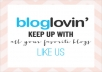 give 200 BLOGLOVIN followers to your blog