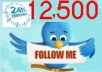 get you 12500+ TopQuality Real looking TWITTER followers follow without the need of your password