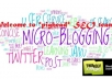 "seo 200 microblog DOfollow backlinks from web 2 0 ""NEW"""