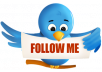 give you 600+ twitter follower only