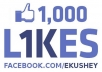 Get You 1000+ Real Likes To Your Facebook Fan Page