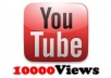 give your youtube video 10,000 views in 48 hours for