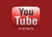 deliver 50,000 youtube views to your Youtube Video