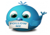 provide you 250 twitter followers human/real/active 