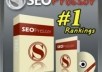 Give you wordpress seo pressor multi site with Great seo tool