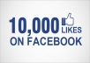 give you 10000 Real Facebook Likes
