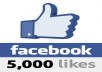 give you 5000 Genuine facebook likes