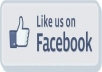 give you 350 real facebook like on your any page from real user