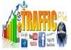 deliver real human traffic to your website for 1 full YEAR, adsense safe service for $5