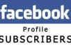 give u 300 facebook subscribers within a short time