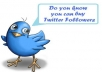 provide you with 100+ Twitter followers who are active in 24 hours or less with no admin access
