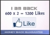 provide 1200+ USA Permanent Facebook likes/Fans divided into two Facebook pages 600x2= 1200 In few hours