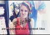 give 650+ Real Permanent USA Facebook High Quality Profiled Fan Likes/Fans in 15 minutes