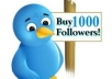 give you verified 1000 twitter followers only