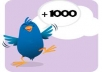 give you 250+ twitter real followers {manually done}only
