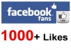 get +1,000 LIKEs to your facebook FAN PAGE [limited offer]