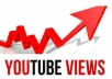 deliver 1005+ youtube views, guaranteed youtube views