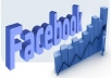 give You 1300+ Facebook Fans,Likes With Profile Pictures And Fully Profiled Accounts Which Look Like Real Accounts Only 