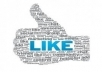 *Give you 1000 VERIFIED authentic facebook likes guaranteed safe to any domain website webpage blog in 24 hours