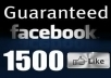 give you 1500 FACEBOOK like facebook likes fans to any page in less then 24 hours 