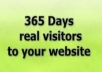 deliver real human traffic to your website for 1 full YEAR, adsense safe service only