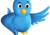 add More Than 800+ Followers on Your Twitter Account in Maximum 8 Hours Without Your Password