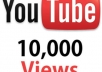 deliver 12,222+ Safe, Fast Youtube Views in Less than 48 hours