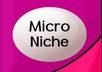 give you one micro niche keyword with 5400+ US exact Search and low competition