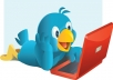 get you 52500+ Twitter Followers in less than 12 hours