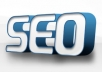 do Whitehat SEO to your website or blog for 6 months with full report