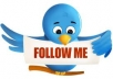 give you 260+twitter followers only