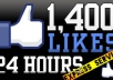 Give you 1500+ facebook page likes from european countries in 24hours, all real and active fb fans, pagelikes, fbfans, facebook pages
