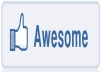 give you 1000 REAL Facebook likes/fans to your fan page in 48 hours without Admin Acces