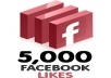 Give you High Qulity 5000+500 Bonus Facebook like within 24 hours
