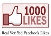 get 1,001 Real US and Uk based Verified facebook likes to any web link you provide me with in 24 hours