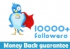 add More Than 15,000+ Followers on Your Twitter Account in 10 Hours Without Needing Yours Password