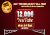give you 12,000+ youtube video views in Not Less than 4 days