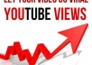 give you 1000 REAL youtube views[No BOTS and PROXIES Used] and 25 likes with a natural pattern over a full week 140+ views per day