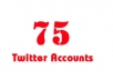 create twitter accounts around 75++ and assured professional twitter accounts