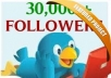Get you +30000 TWITTER FOLLOWERs [immediately]