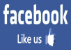 add 300 real likes to your facebook fanpage
