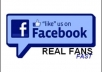 provide you Real looking Facebook Likes about 50++ in 48 hours