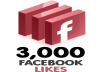 3000+ facebook page likes from european countries in 20minutes, all real and active fb fans, pagelikes, fbfans, facebook pages, fanpages