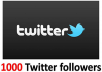 Get You 1000+ High Quality Twitter Followers