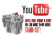 give  you not less than 250 youtube views and with 15 youtube video likes within 24 hours.