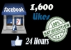 give You 1600+ Facebook Fans USA Likes With Profile Pictures And Fully Profiled Accounts Which Look Like Real Accounts Only