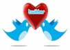 help You To Increase 6000 Followers In Your Twitter Account Within Few Hours